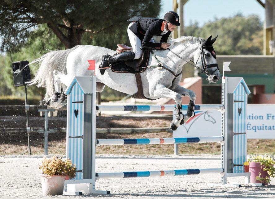 treatment for insulin resistant horses